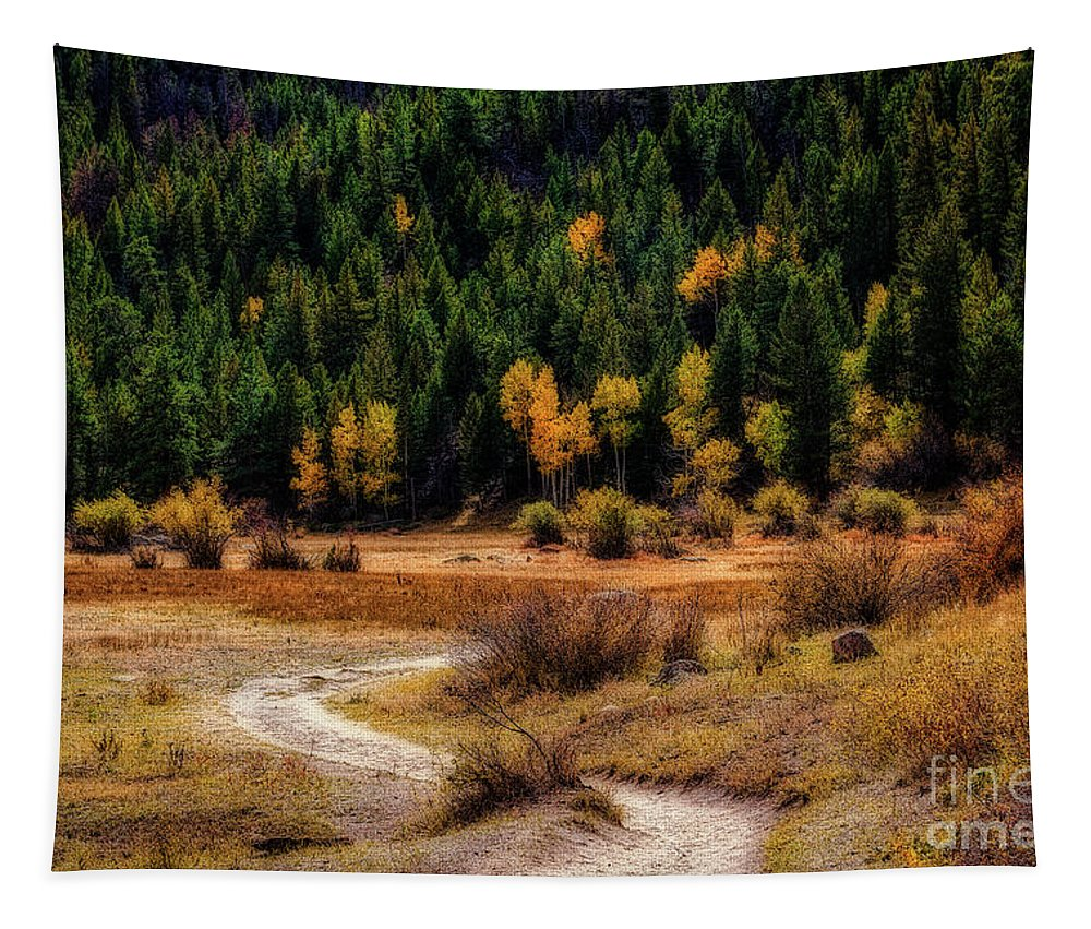 Jon Burch Tapestry featuring the photograph The Road To Fall by Jon Burch Photography