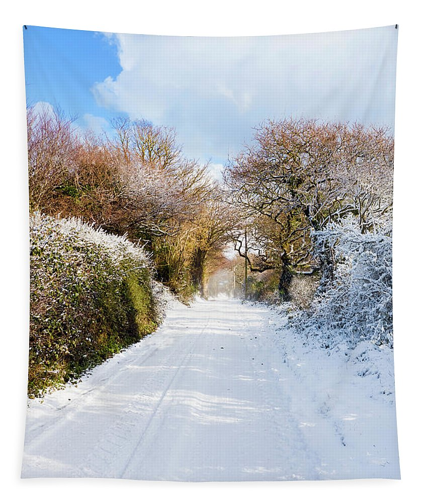 Cornwall Tapestry featuring the photograph The Road To Restronguet by Terri Waters
