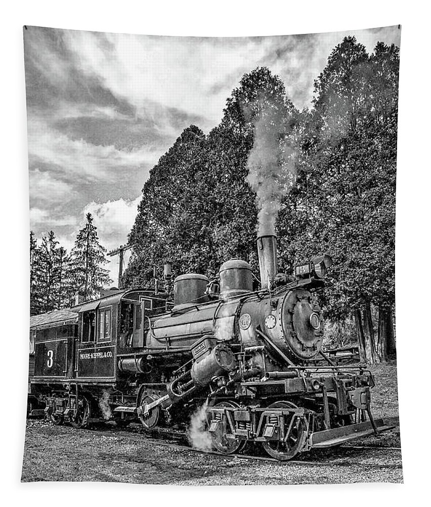 Pocahontas County Tapestry featuring the photograph The Rocket Monochrome by Steve Harrington