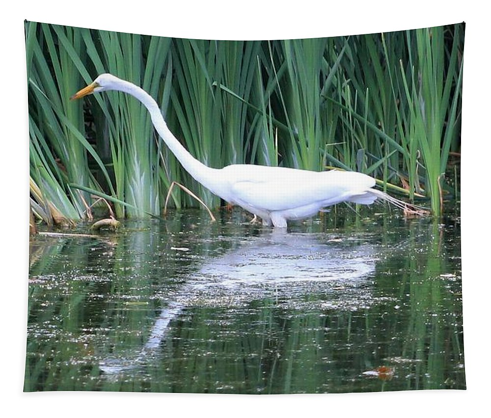 Karen Silvestri Tapestry featuring the photograph The Search For Food Continues by Karen Silvestri