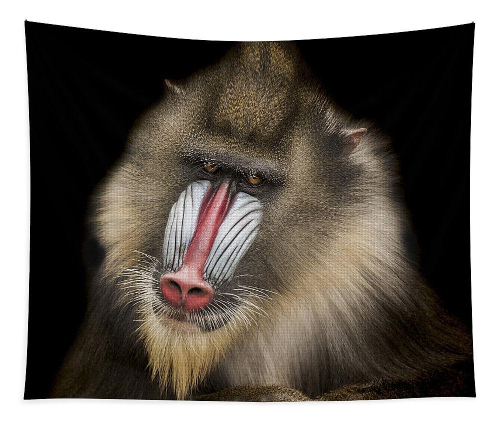 Mandrill Tapestry featuring the photograph The Shrink by Paul Neville