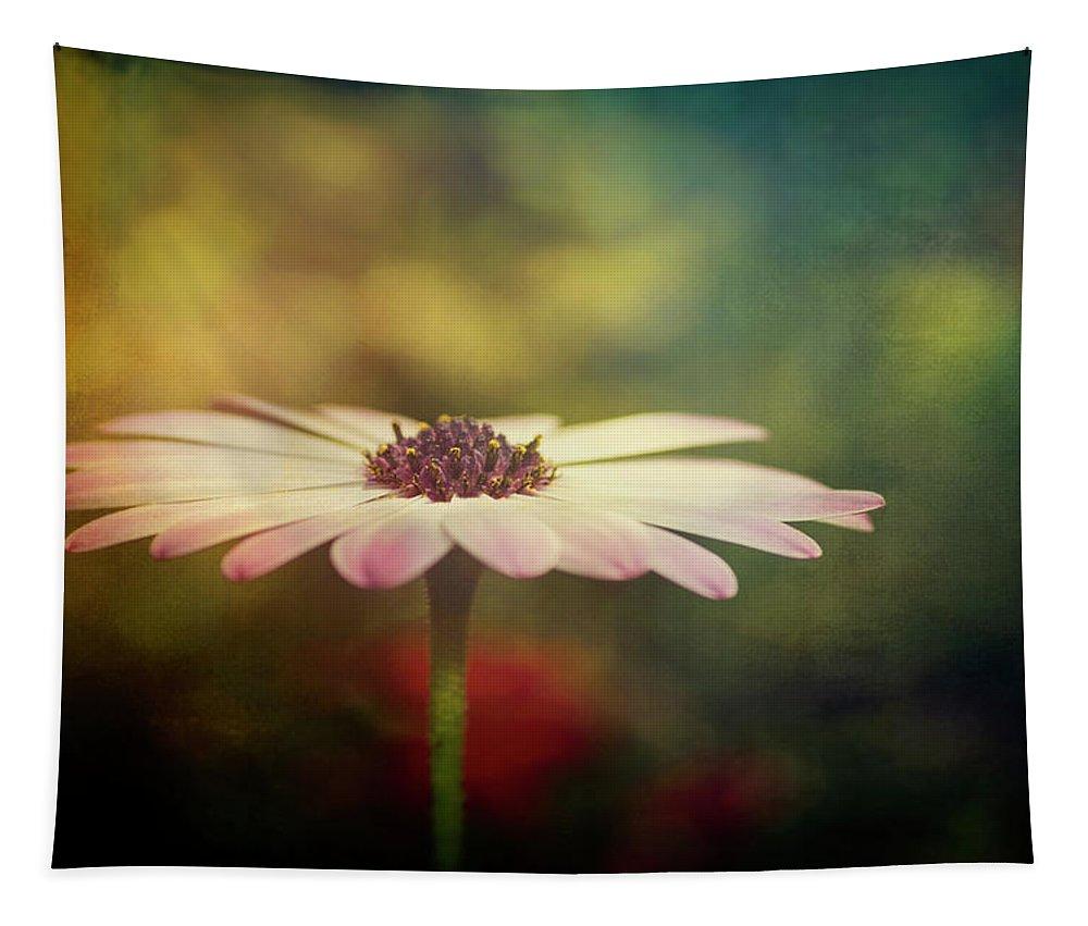 Purple Daisy Tapestry featuring the photograph The Simple Beauty by Saija Lehtonen