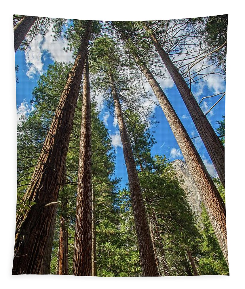 Yosemite National Park Tapestry featuring the photograph The Sky's The Limit by Lynn Bauer
