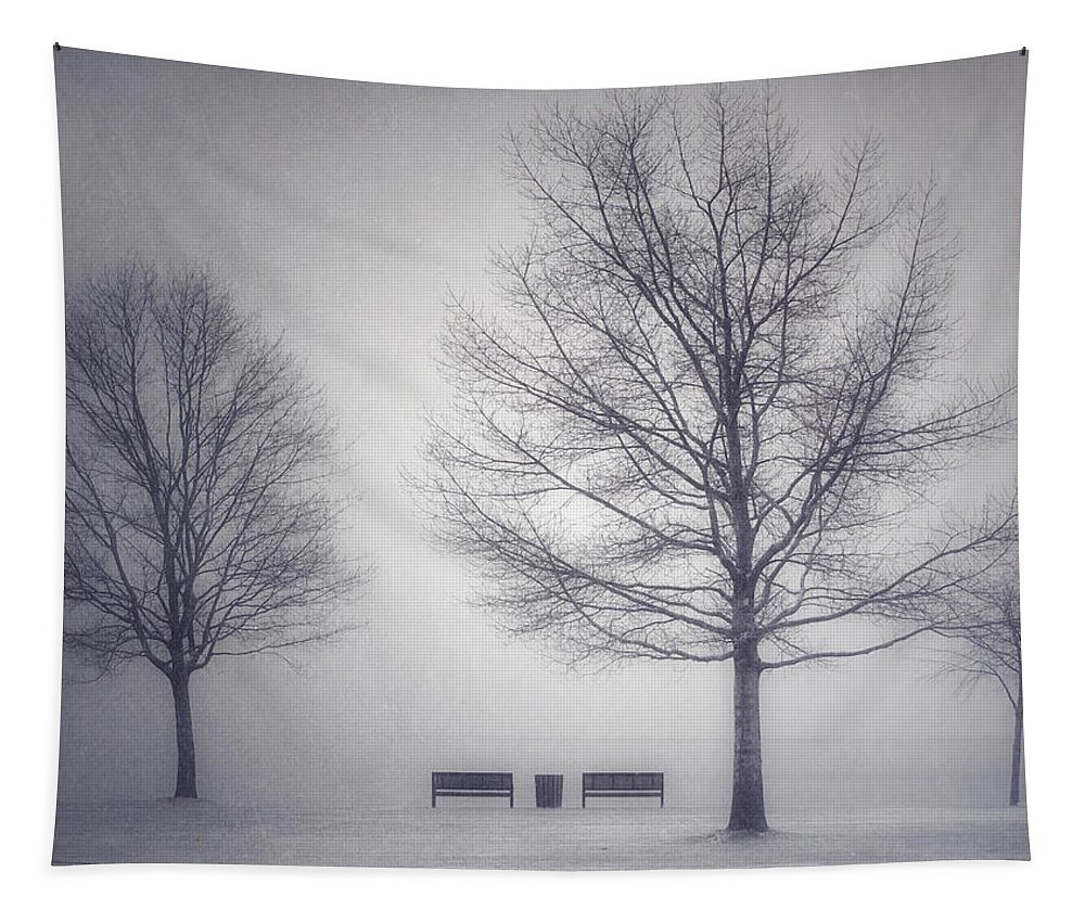 Photography Tapestry featuring the photograph The Soft Breath Of Winter by Tara Turner