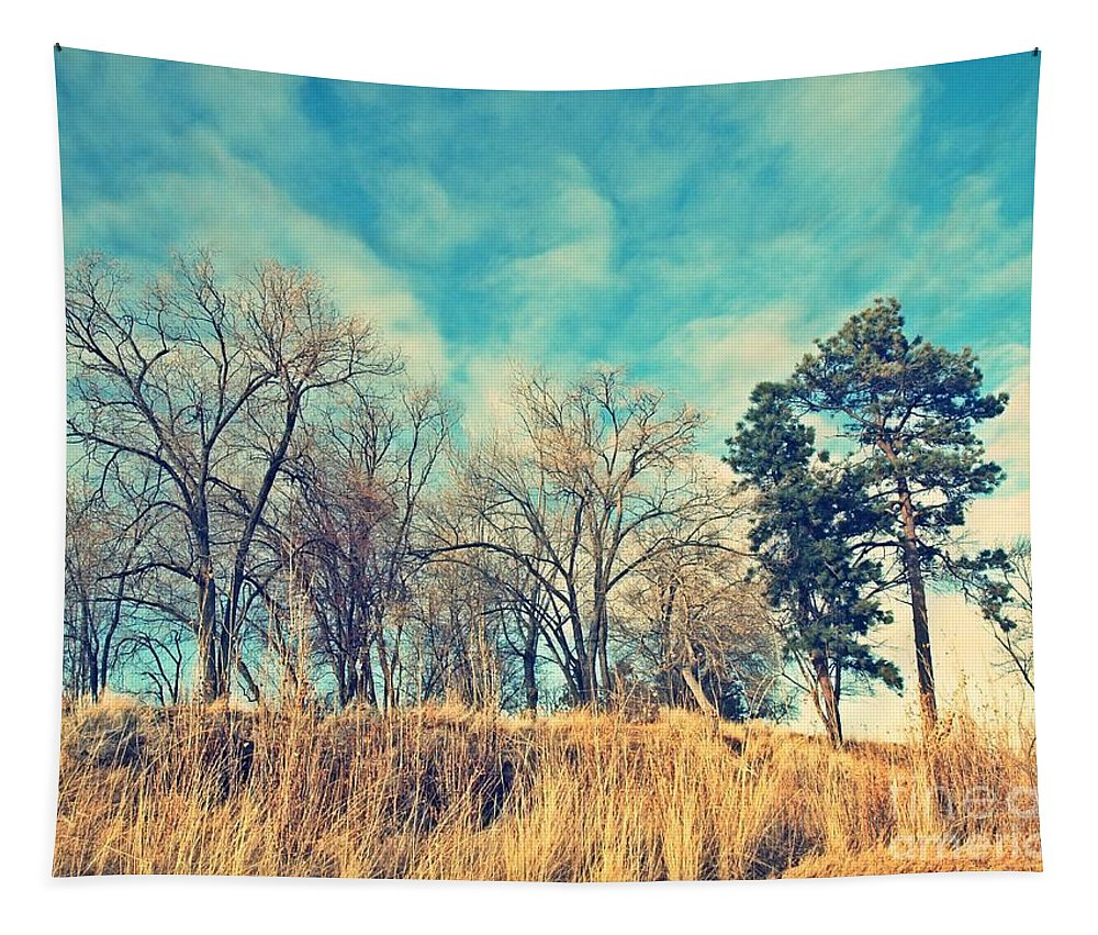 Cross Tapestry featuring the photograph The Sunday Trees by Tara Turner