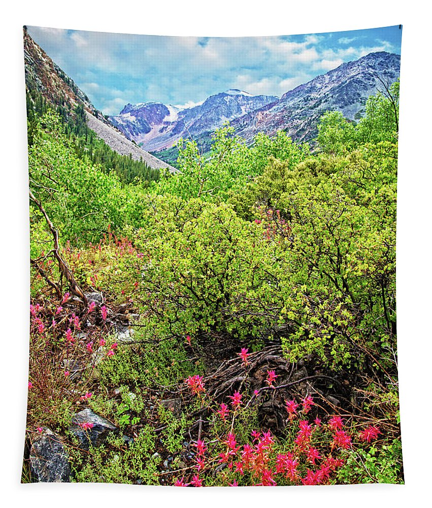 Summer Tapestry featuring the photograph The Wildflowers Of Lundy Canyon by Lynn Bauer