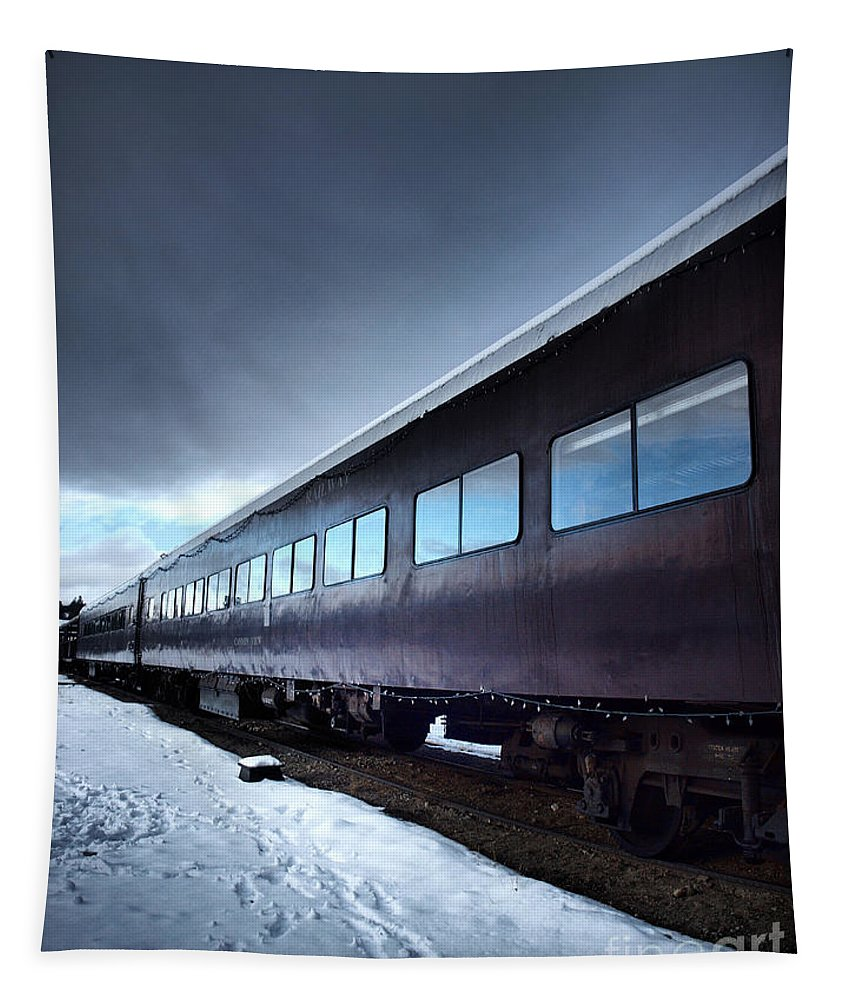 Train Tapestry featuring the photograph The Windows Of The Train by Tara Turner