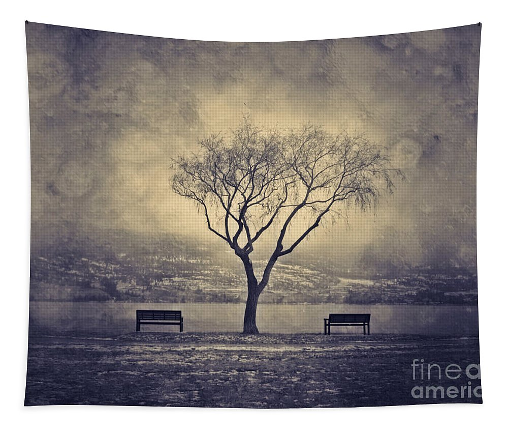 Texture Tapestry featuring the photograph The Winter And The Benches by Tara Turner