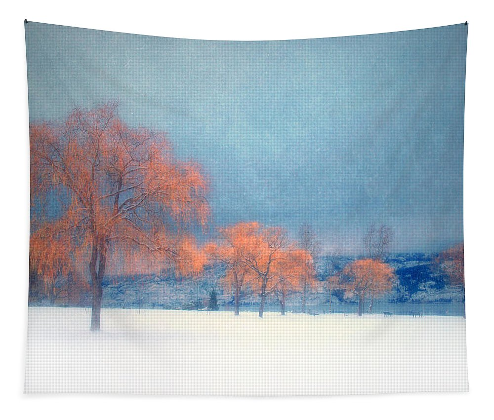 Blue Tapestry featuring the photograph The Winter Blues by Tara Turner
