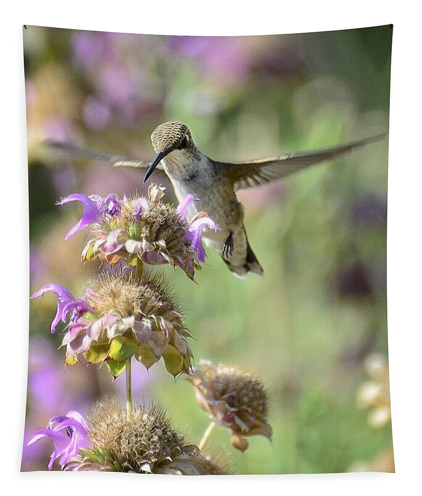 Hummingbird Tapestry featuring the photograph The Wonder Of Wings by Saija Lehtonen