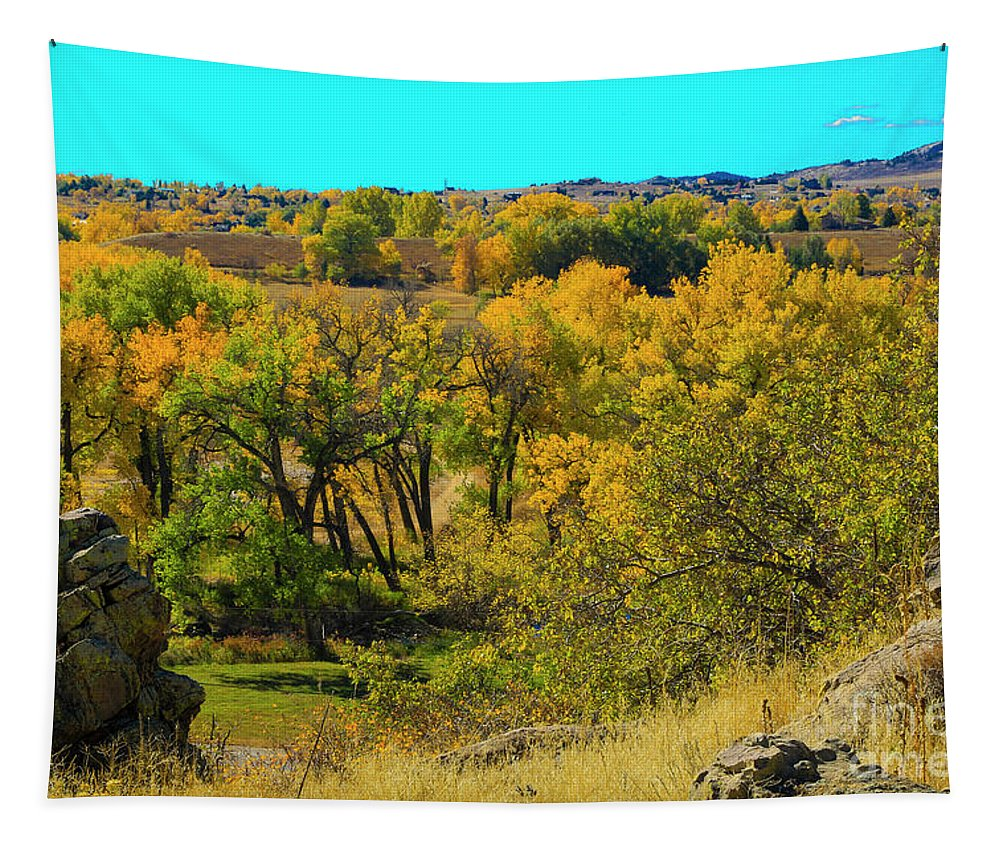 Jon Burch Tapestry featuring the photograph Thompson Valley Overlook by Jon Burch Photography
