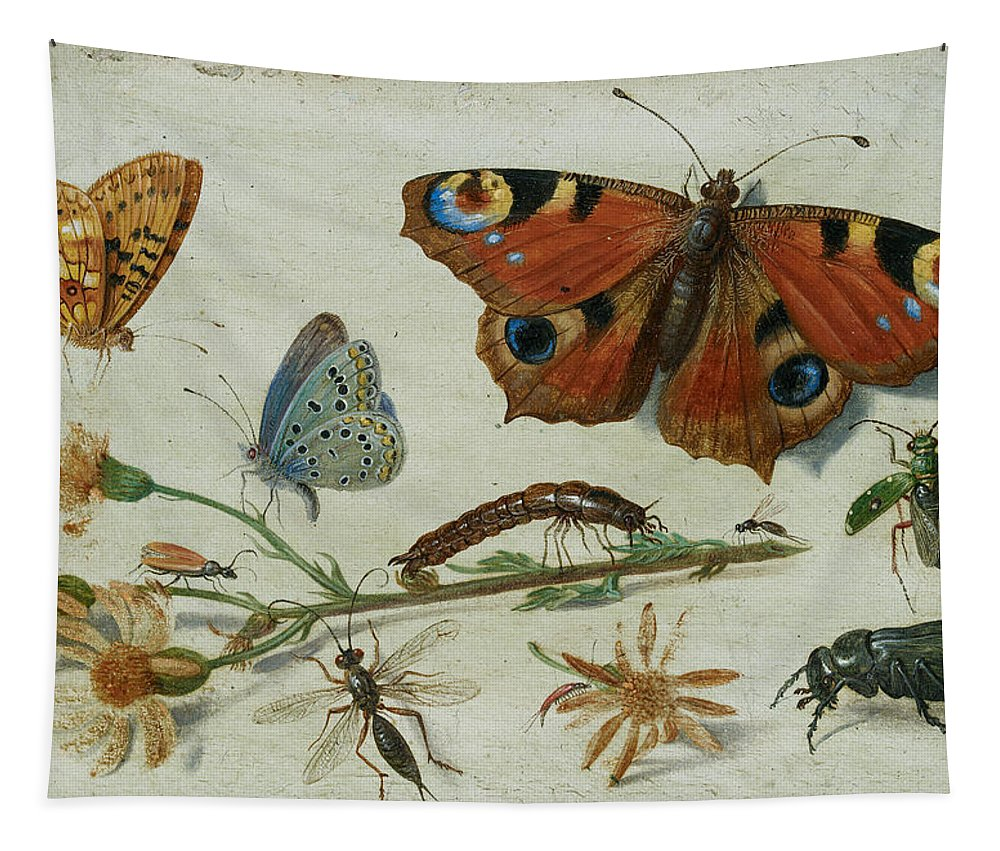 Jan Tapestry featuring the painting Three Butterflies, A Beetle And Other Insects by Jan van Kessel