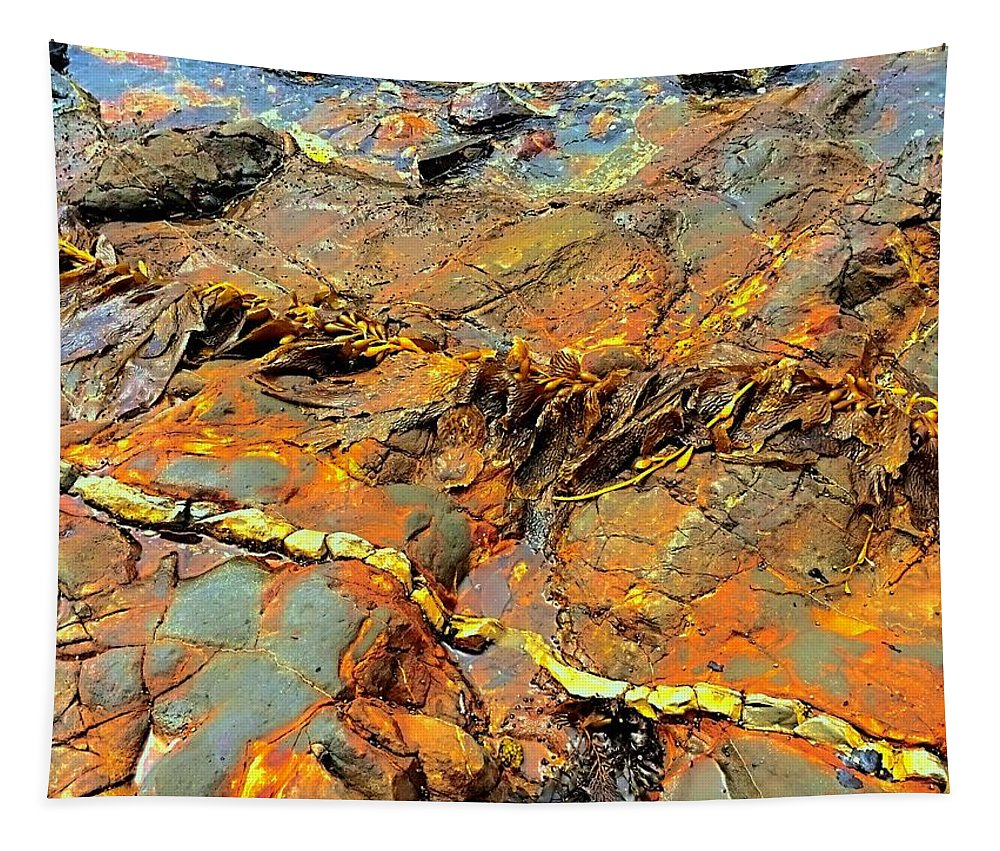 Landscape Tapestry featuring the photograph Tide Pool Ribbons by FlyingFish Foto