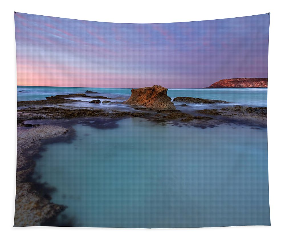 Seascape Tidepools Tapestry featuring the photograph Tidepool Dawn by Mike Dawson