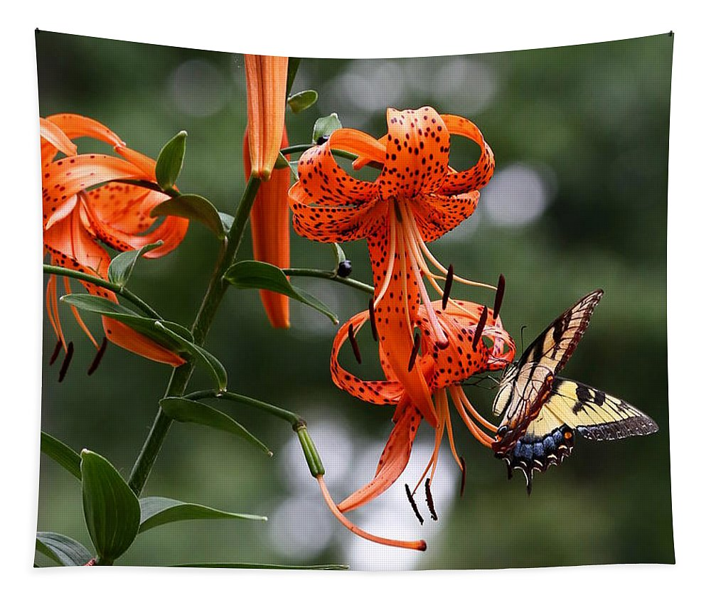 Lily Tapestry featuring the photograph Tiger Tiger by Debi Dalio