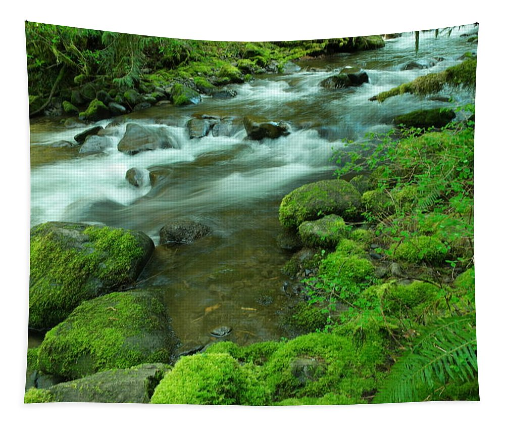Rivers Tapestry featuring the photograph To Sit And Watch by Jeff Swan