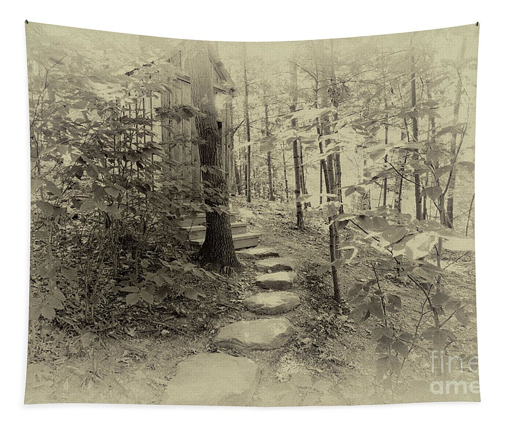 Path Tapestry featuring the photograph To The Throne by William Norton