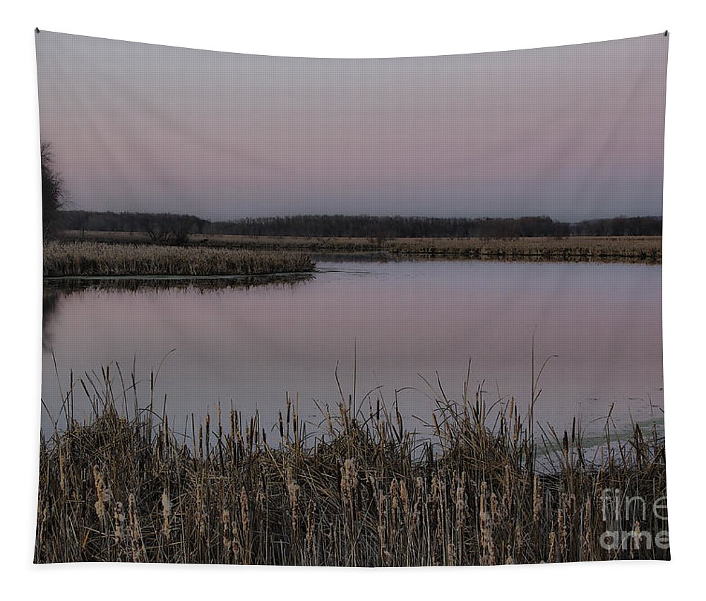 Light Tapestry featuring the photograph Total Peace And Calm by Deborah Benoit