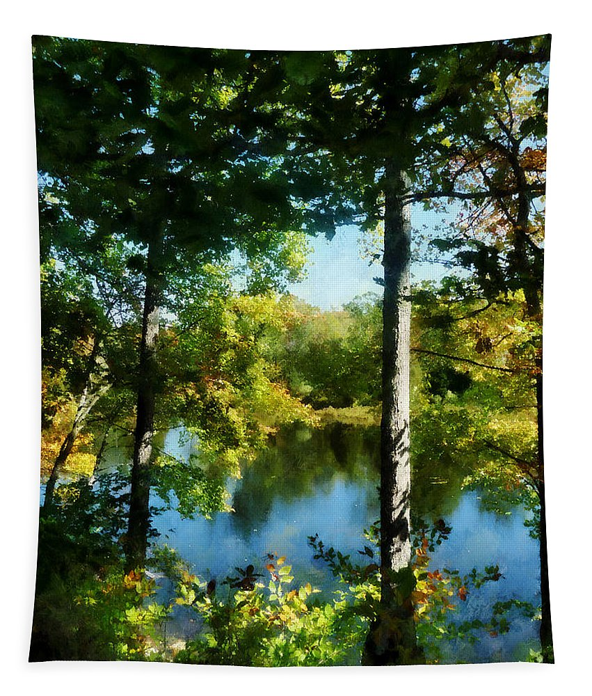 Autumn Tapestry featuring the photograph Touch Of Autumn by Susan Savad