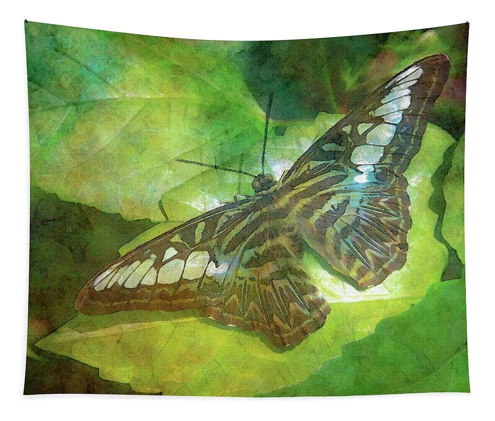 Butterfly Tapestry featuring the photograph Touch Of Blue 8251 Idp_2 by Steven Ward