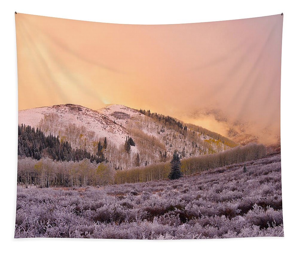 Touch Of Winter Tapestry featuring the photograph Touch Of Winter by Chad Dutson