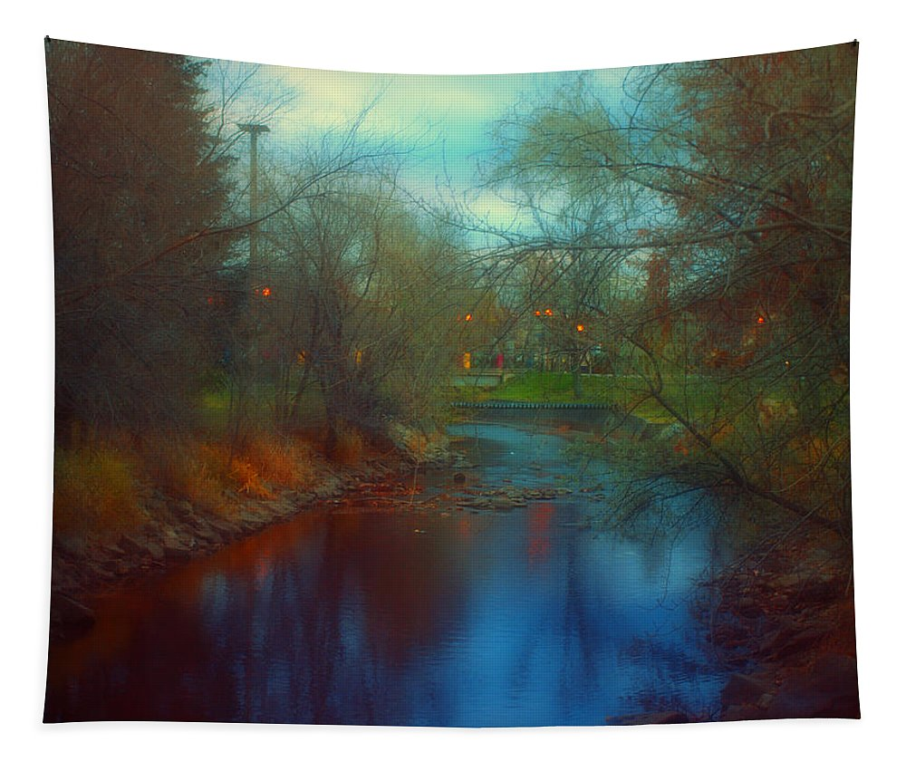 Creek Tapestry featuring the photograph Toward The City Lights by Tara Turner