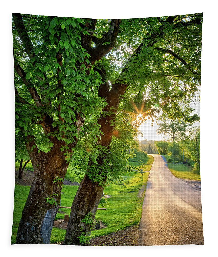 Appalachia Tapestry featuring the photograph Trail Into Sunset by Debra and Dave Vanderlaan
