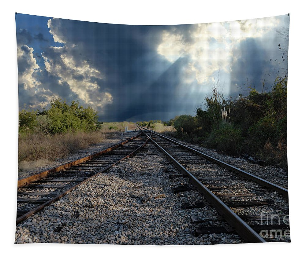 Train Tracks Tapestry featuring the photograph Train Track Junction In Charleston Sc by Dale Powell