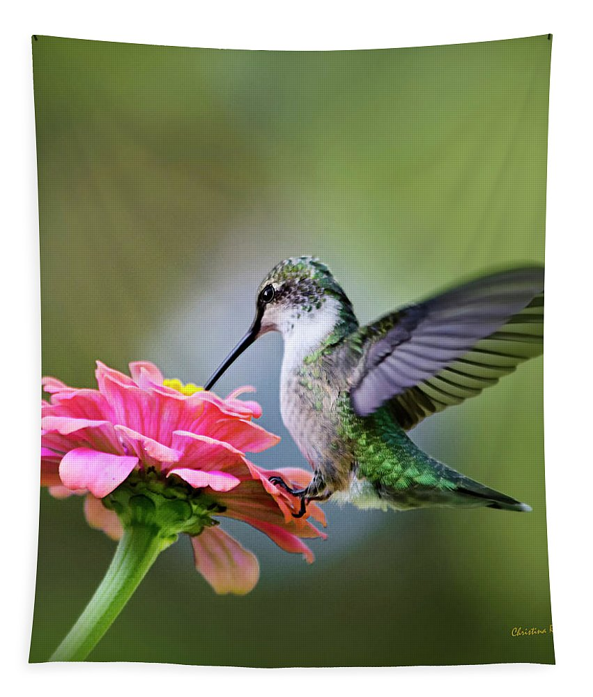 Hummingbird Tapestry featuring the photograph Tranquil Joy Hummingbird Square by Christina Rollo