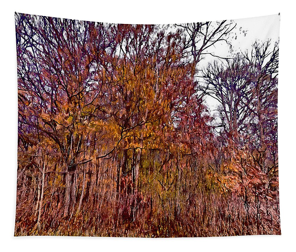 Autumn Tapestry featuring the photograph Transitions - Painterly by Leslie Montgomery