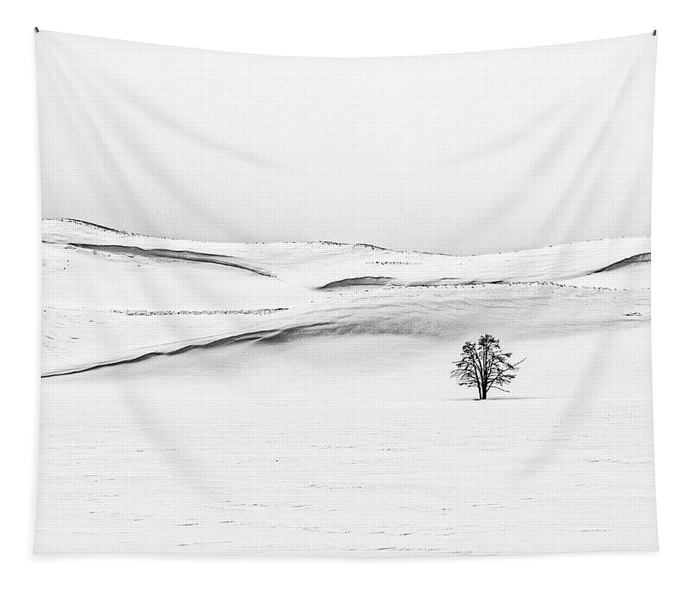 Yellowstone Tapestry featuring the photograph Tree In A Field Of Snow - Yellowstone by Stuart Litoff