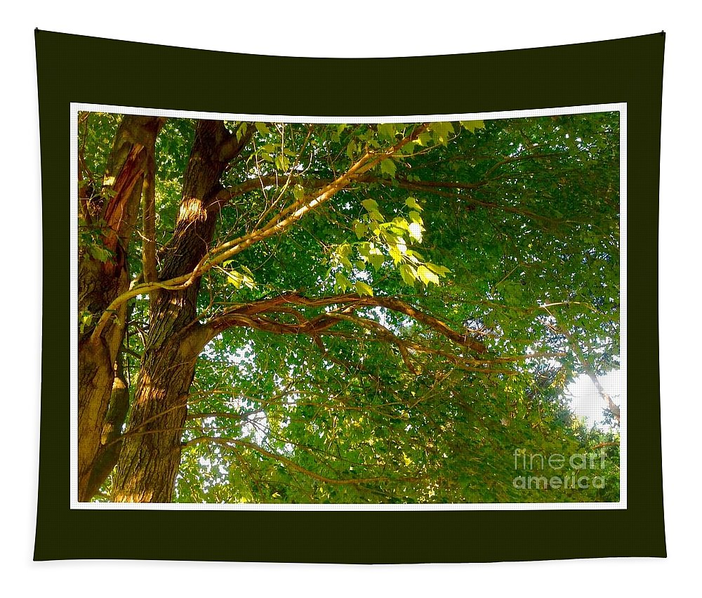 Nature Tapestry featuring the digital art Tree In Late Summer by Debra Lynch