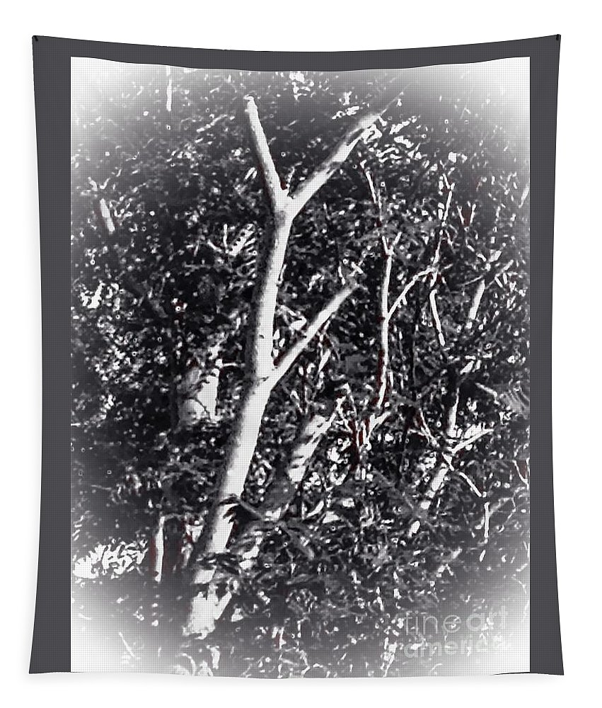 Tree Tapestry featuring the photograph Tree In Summer In Black And White by Debra Lynch
