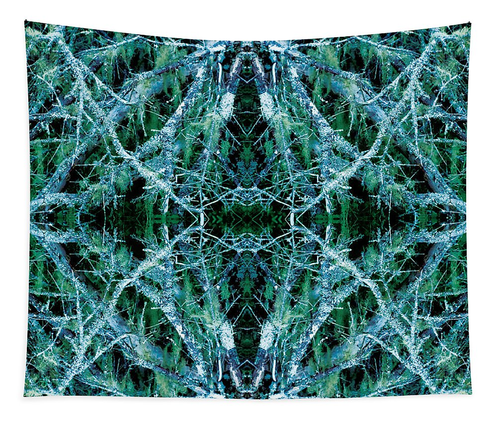 Trees Tapestry featuring the photograph Tree Moss Mandala by Celtic Artist Angela Dawn MacKay