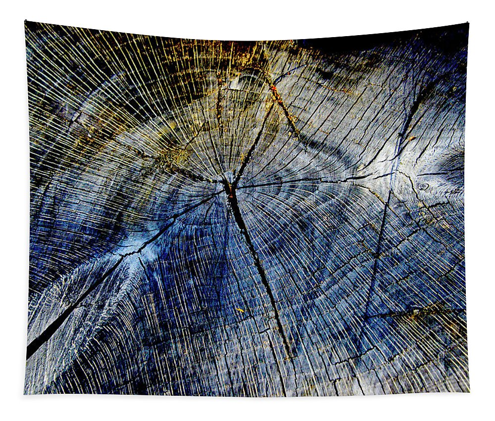 Tree Tapestry featuring the photograph Tree Slab - 5025 by Paul W Faust - Impressions of Light