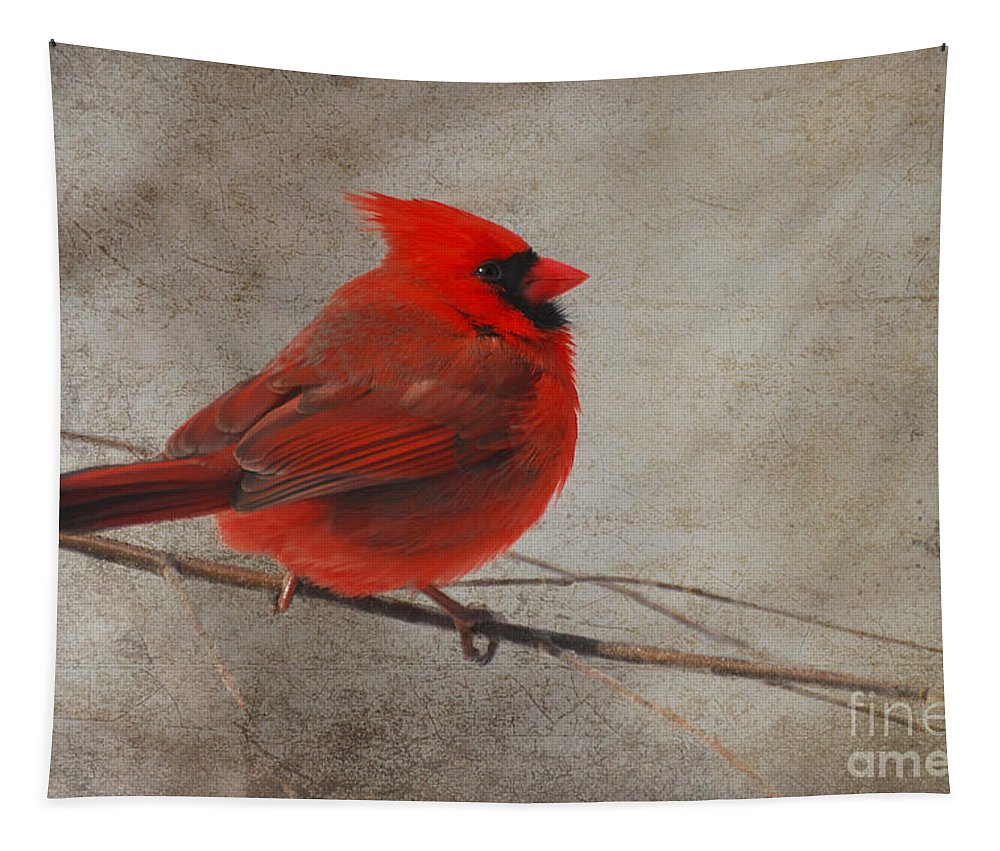 Birds Tapestry featuring the photograph Tree Treasure by Lois Bryan