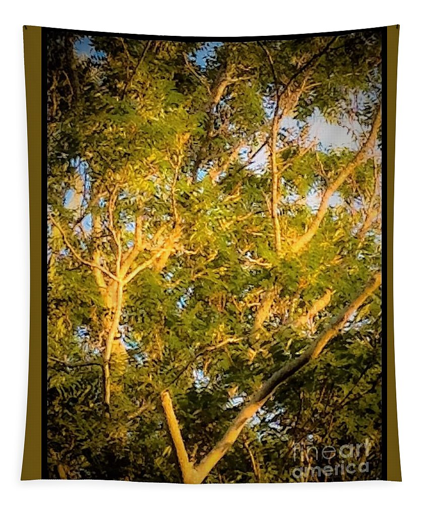 Tree Tapestry featuring the photograph Tree With V Shaped Branches by Debra Lynch