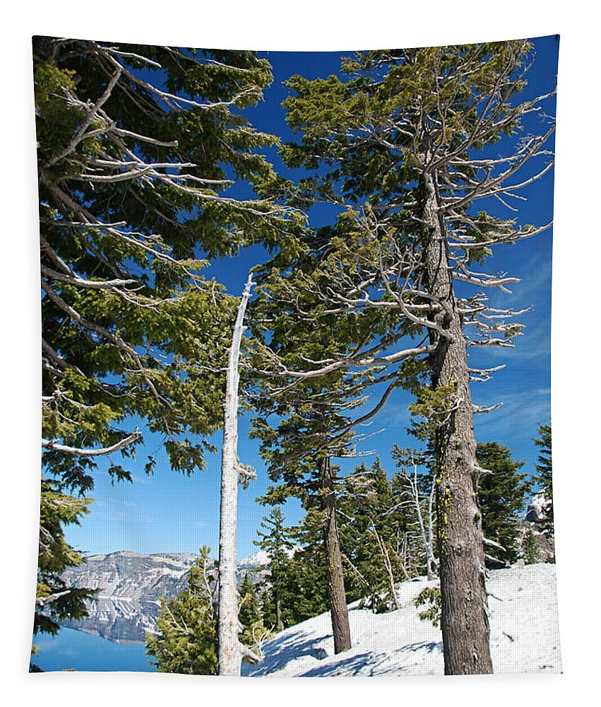Tree Tapestry featuring the photograph Trees And Snag At Crater Lake by Katherine Nutt