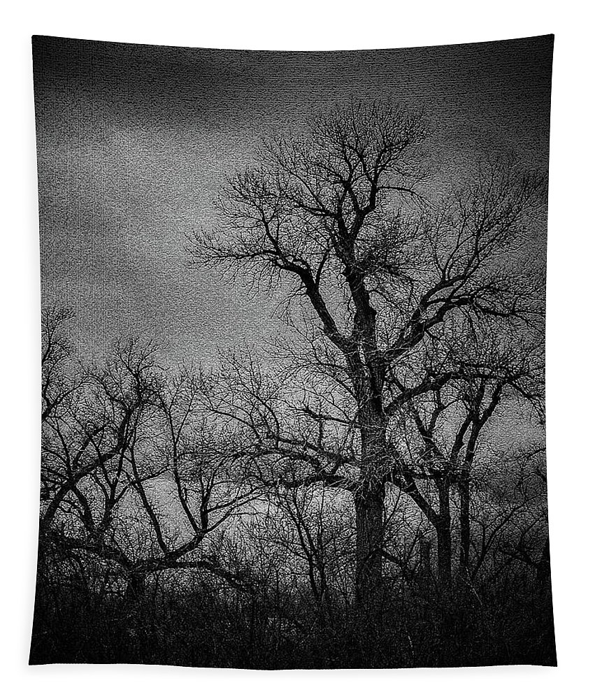 Painting Tapestry featuring the photograph Trees In Storm In Black And White by Brenda Landdeck