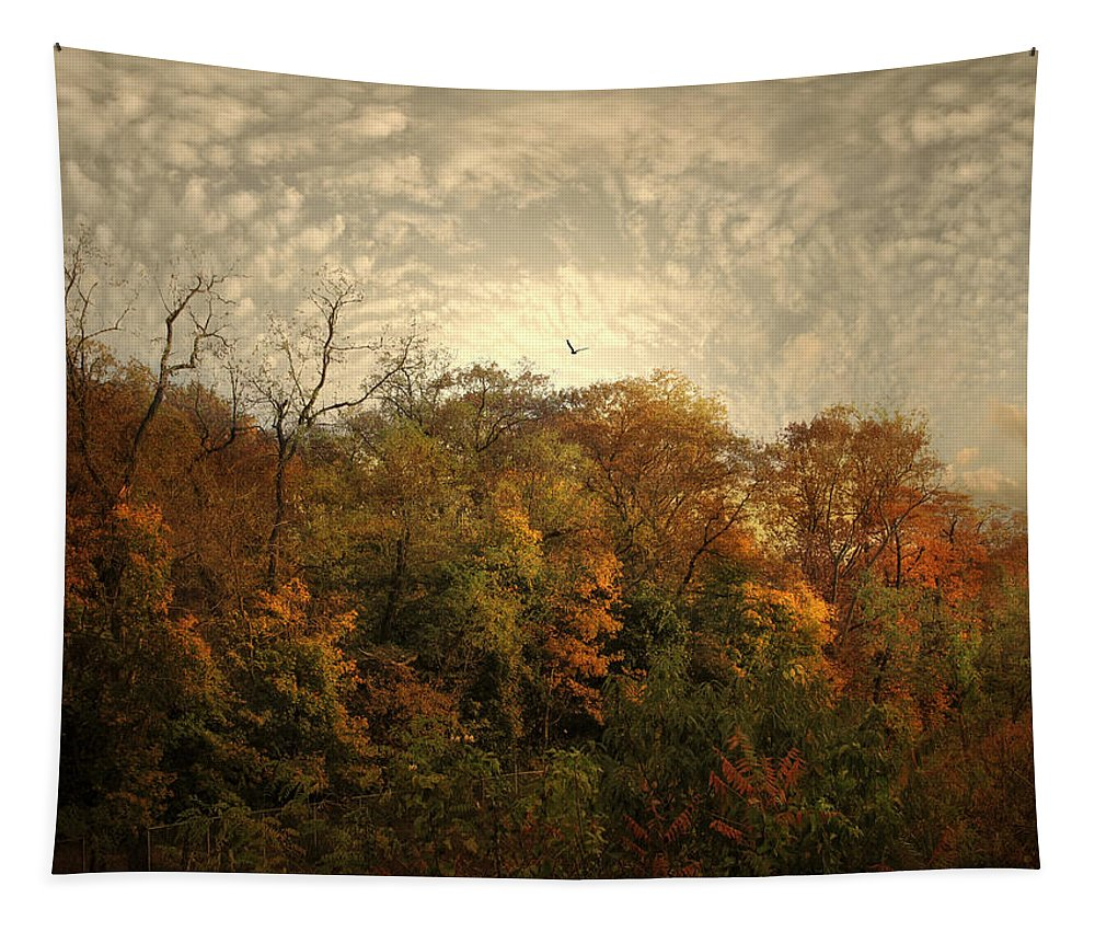 Nature Tapestry featuring the photograph Treetops by Jessica Jenney
