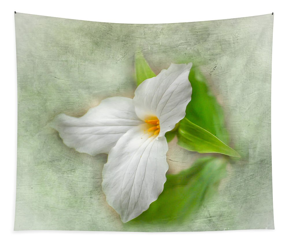 Trillium Wildflower Tapestry featuring the photograph Trillium Wildflower by Kerri Farley
