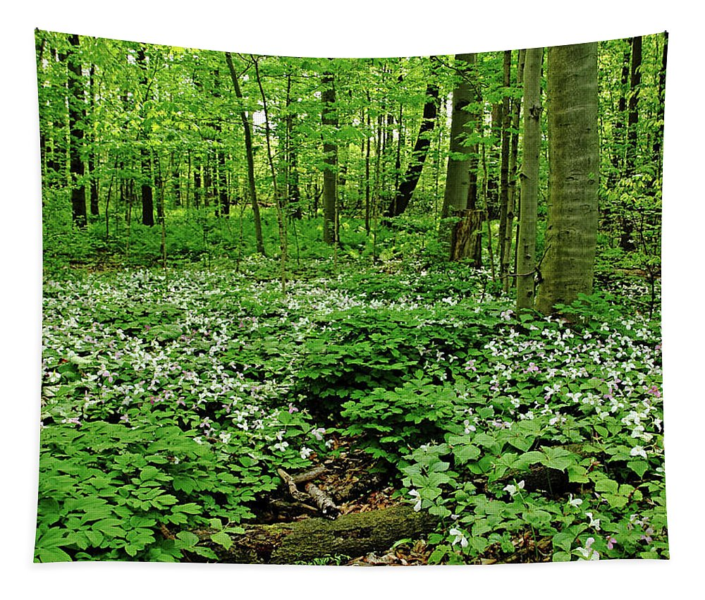 Trilliums Tapestry featuring the photograph Trillium Woods Vi by Debbie Oppermann