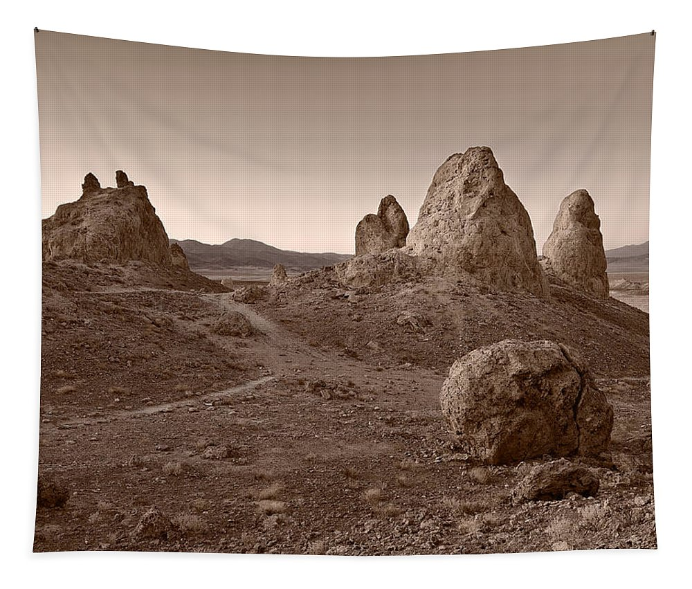 California Tapestry featuring the photograph Trona Landscape by Steve Gadomski