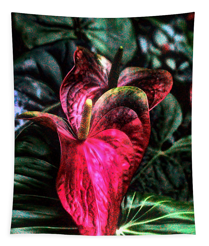 Anthurnium Flower Tapestry featuring the photograph Anthurium Red Tropical Flower by Tom Prendergast