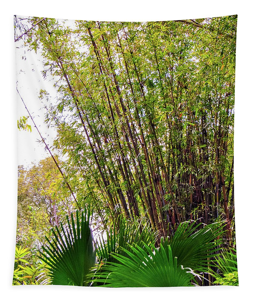 Tropical Tapestry featuring the photograph Tropical Bamboo by Pamela Williams