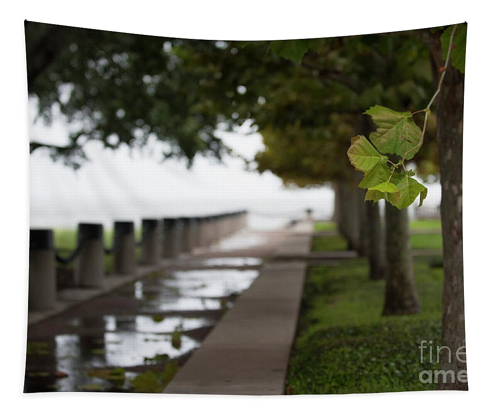 Tropical Storm Hermine Tapestry featuring the photograph Tropical Storm Hermine by Dale Powell
