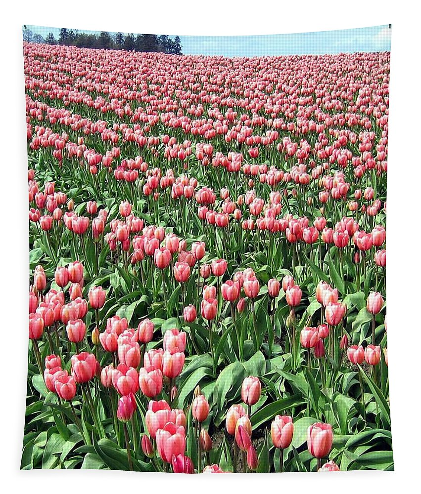 Agriculture Tapestry featuring the photograph Tulip Town 14 by Will Borden