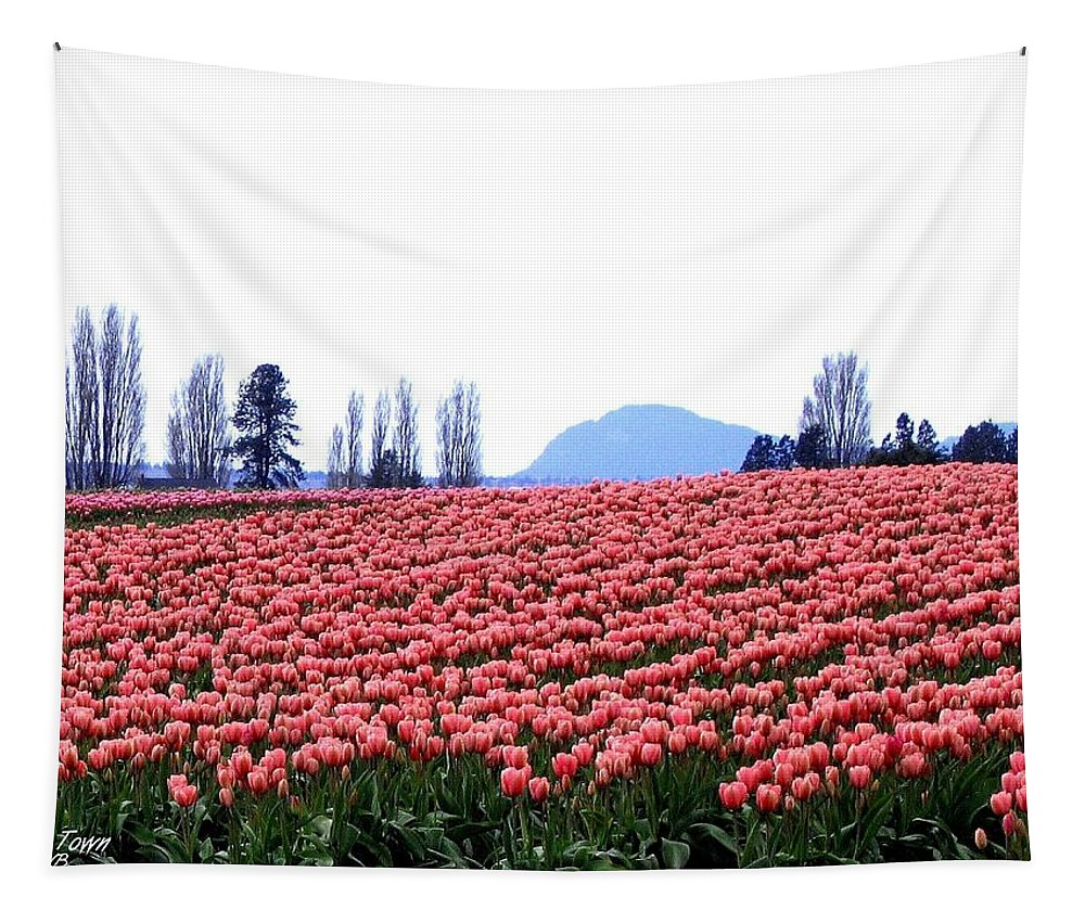 Agriculture Tapestry featuring the photograph Tulip Town 3 by Will Borden