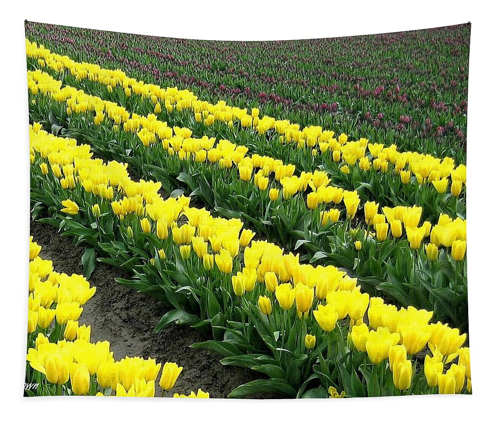 Agriculture Tapestry featuring the photograph Tulip Town 9 by Will Borden