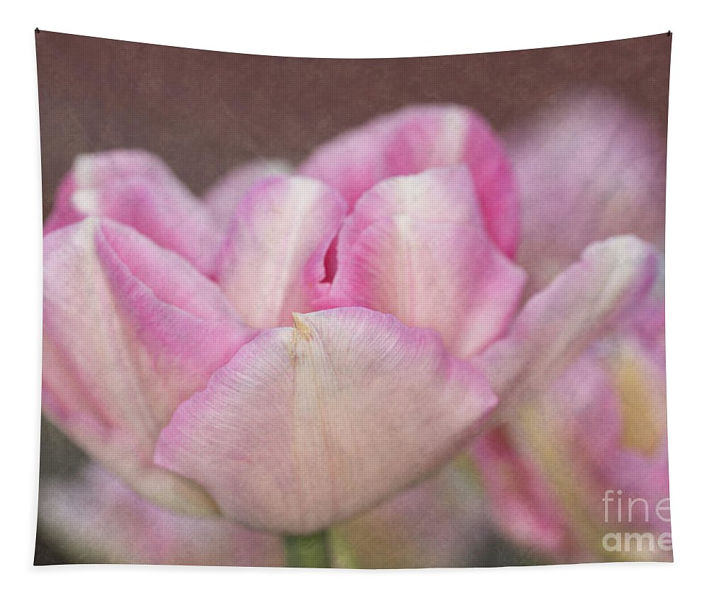 Pink And White Tulips Tapestry featuring the photograph Tulips With Texture by Steve Purnell